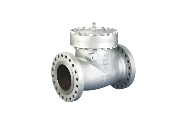 Check Valves supplier and dealer in India